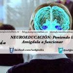Neuroeducación: Poniendo la amígdala a funcionar.