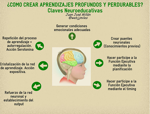 Neuroeducación: Claves para crear aprendizajes profundos y perdurables.