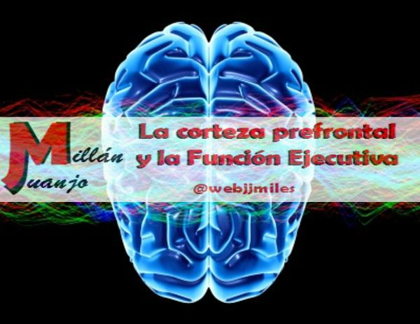 La corteza prefrontal y la Función Ejecutiva.